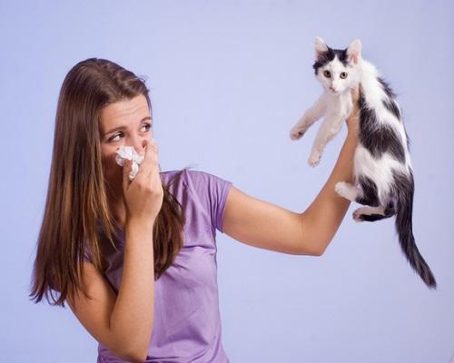 Allergie Planten Huid : Allergie